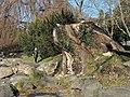 Seefeldquai 2014-01-06 12-22-45 (P7700).JPG