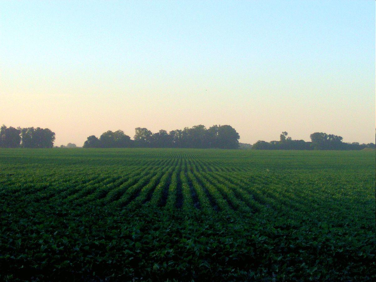 Agricultura - Wikipedia, la enciclopedia libre