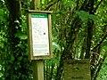 Shaptor Woods - geograph.org.uk - 1470252.jpg