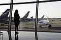 Sheremetyev-airport-moscow-august-2014.jpg