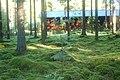 Skogsidyll Kristinehamn skärgård - panoramio.jpg