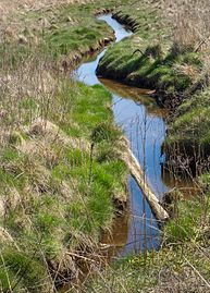 Small stream at Gullmarsvik 4.jpg
