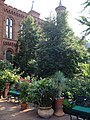 Smithsonian-haupt-garden-planters.jpg