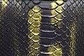 Snake Skin Texture (18).jpg