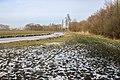 Snelle dooi in de polder Spijkenisse.jpg