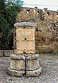 Source romain.jpg