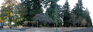Mt. Scott-Arleta, Portland, Oregon - Image: Southeast corner of Mt Scott Park, Portland, Oregon