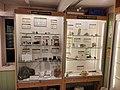 Special displays on mice and beryl.jpg