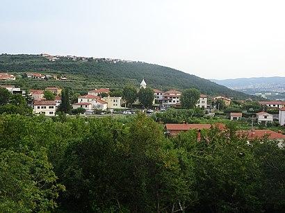 How to get to Spodnje Škofije 3 with public transit - About the place