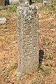 Spomenici na seoskom groblju u Nevadama (90).jpg