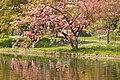 Spring in London (6970519906).jpg