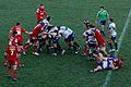 Stadio Monigo , Treviso vs Scarlets - panoramio (4).jpg