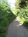 Steep lane near Chilmark - geograph.org.uk - 906332.jpg