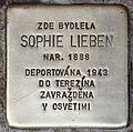 Stolperstein für Sophie Lieben.jpg
