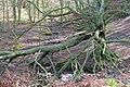 Stream Junction, Handale Wood - geograph.org.uk - 716875.jpg