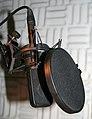 Studio microphone with pop-shield crop.jpg
