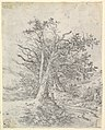 Study for Tree Trunks and Lane MET DP822054.jpg