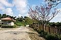 Sueyoshi Park Naha Okinawa Japan18s3.jpg