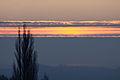 Sunrise 2009-02-13 (3276344508).jpg