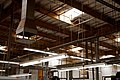 TGFT30 ceiling of industrial factory - Taylor Guitar Factory.jpg