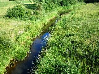 The river Tatula at Pabirze village