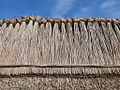 Thatched roofs z04.JPG