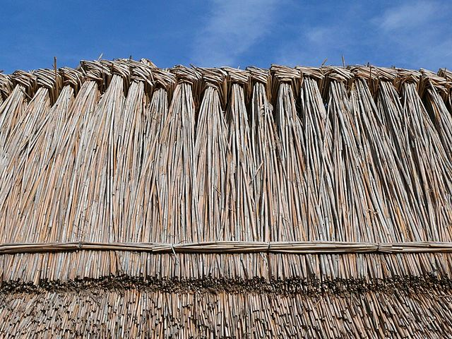 File:Thatched roofs z04.JPG - Wikimedia Commons