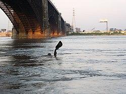 The Captains' Return statue and Eads Bridge