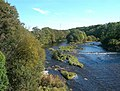 The River Ayr - geograph.org.uk - 579072.jpg