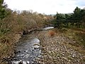 The River Wear - geograph.org.uk - 614685.jpg