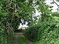 The driveway to Llanfair-yn-y-Cwmwd church - geograph.org.uk - 850130.jpg