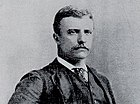 Theodore Roosevelt, New York City police commissioner