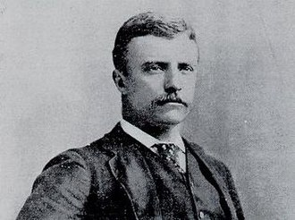 Assistant Secretary of the Navy - Image: Theodore Roosevelt, New York City police commissioner