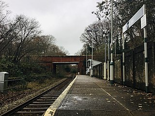 Three Oaks railway station Railway station in East Sussex, England