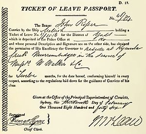Ticket of leave - NSW Colonial Government - Convict Ticket  of Leave Passport