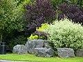 Timber Sculpture - geograph.org.uk - 1475843.jpg