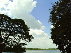 View of the artificial Tissa Wewa lake, seen from the Rest House