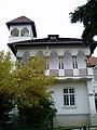 TomaTSocolescu-Campina-CasaD.Stefanescu-1.jpg