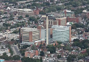 Toronto Western Hospital - Image: Toronto Western Hospital from CN Tower