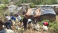 Township Slums 03.jpg
