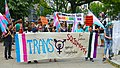 Trans Solidarity Rally and March 55436 (17175687863).jpg