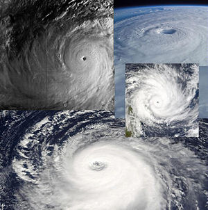 Collage of several tropical cyclones. All imag...