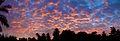 Tunisia 10-12 - 165 - Tozeur - Panorama (6609494779).jpg