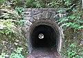 Tunnels Teuchlgraben im unteren Mölltal, Gemeinde Reißeck, Kärnten.jpg