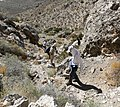 Turtlehead Peak descent 1.jpg