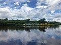 Tutong River.jpg