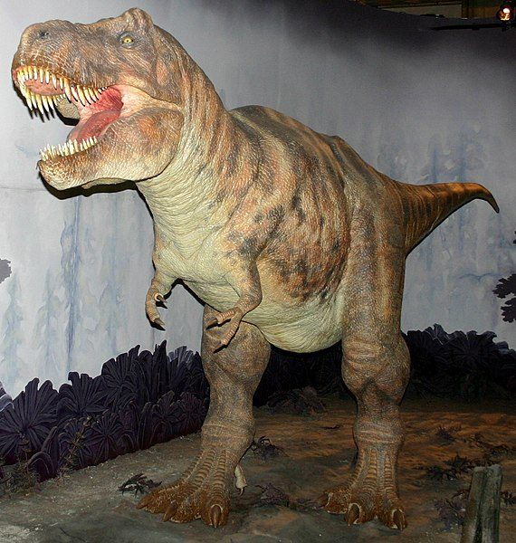 File:Tyrannosaurus model at NHM.jpg
