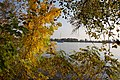 Ukraine, Kherson, Hydropark - panoramio (7).jpg