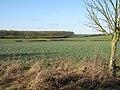 Upper Stour valley - geograph.org.uk - 1636939.jpg