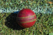 A used cricket ball